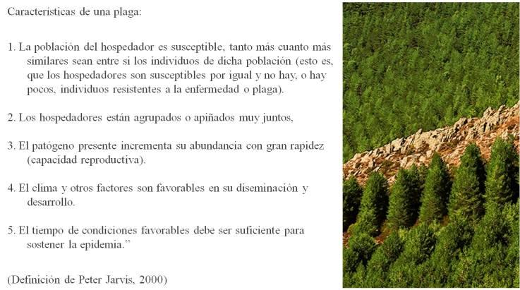 definicion plaga