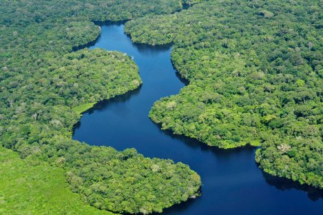 Amazonas_Brazilian_state-Amazon_rainforest-Americas-Brazil-Geography_of_South_America-Intact_forest_landscape-List_of_the_largest_country_subdivisions_by_area