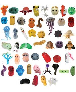 peluches de microbios