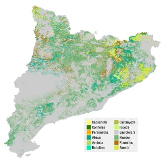 mapa forestal cataluña